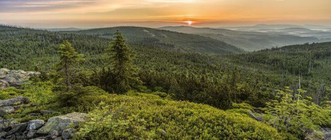 Sonnenaufgang Bayrischer Wald