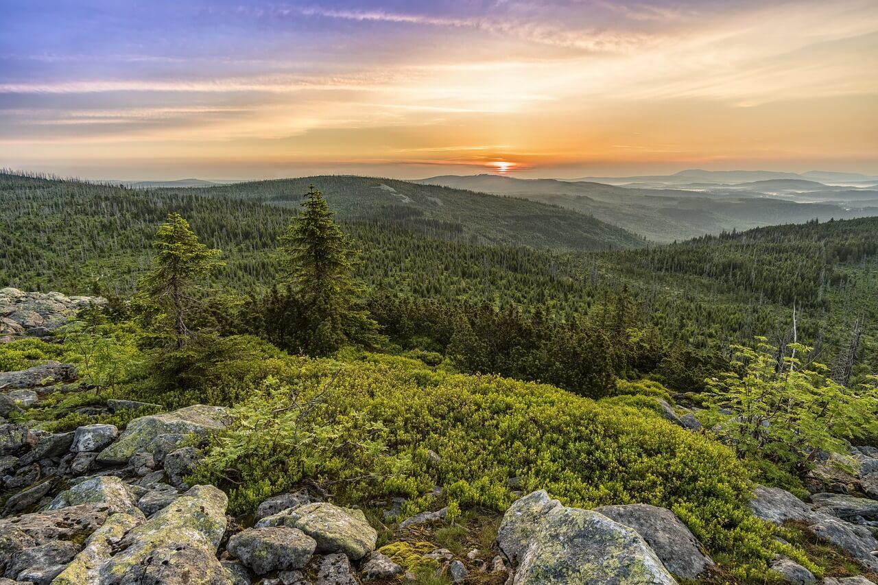Sonnenaufgang-im-Bayrischen-Wald